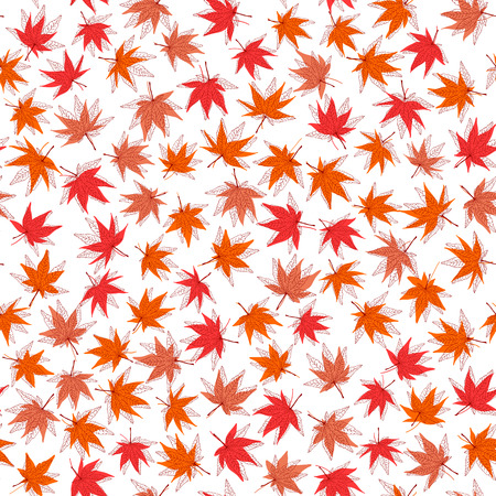 Autumn texture. Seamless pattern with momiji leaves. Fall texture. Backdrop with maple leaves. Warm colors. For wallpaper, pattern fills, web page background, surface textures.
