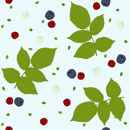 bramble: Seamless pattern with raspberries, blackberries and green leaves on a white field. Traditional colors. Plain endless background with blackberry or raspberry leaves for decoration. Illustration