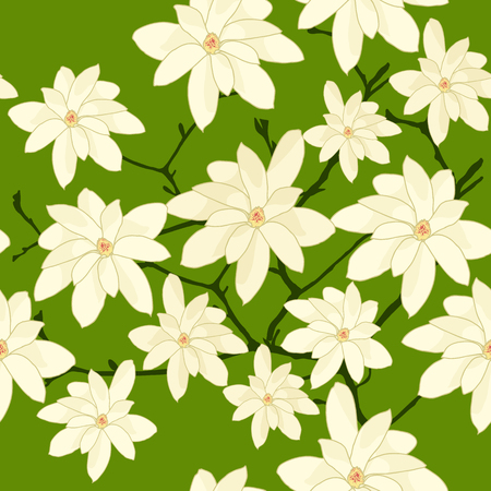 magnolia branch: Seamless Pattern with White Magnolia Branch on a Green Background. Plain background with white flowers for wallpaper or decoration. Illustration