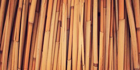 haulm: Dried haulm texture. Aged photo. Bamboo like grass close up. Yellow straw surface. Haulm umbrella macro photo. Antalya Province, Turkey. Stock Photo