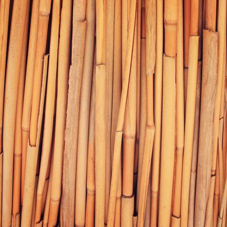 haulm: Yellow straw surface. Haulm umbrella macro photo. Dried haulm texture. Aged photo. Bamboo like grass close up. Antalya Province, Turkey.