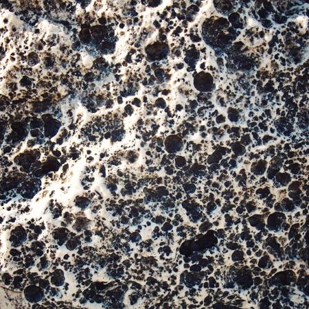 porous: Porous rock texture.