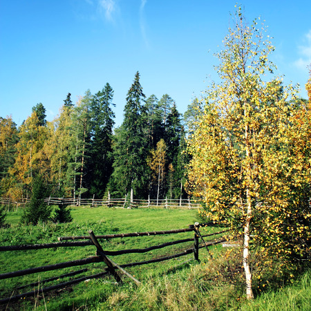 Old wooden fence around a horse grazing pasture. Toned photo. Sunny autumn day on Russian north. Valaam island, Karelia, Russia.