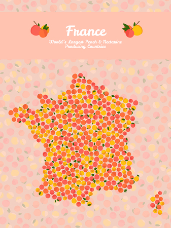 Map of France made out of pink peaches which shows that they are the worlds largest Peach and Nectarine producing country. Illustration