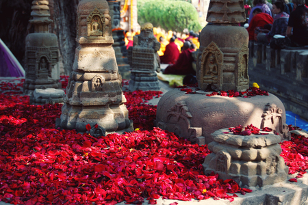Red rose-petals for showing the reverence appropriate to a pilgrimage-place. Numerous small rose petals for offering respect at Mahabodhi Temple. Bodh Gaya, India. Banque d'images