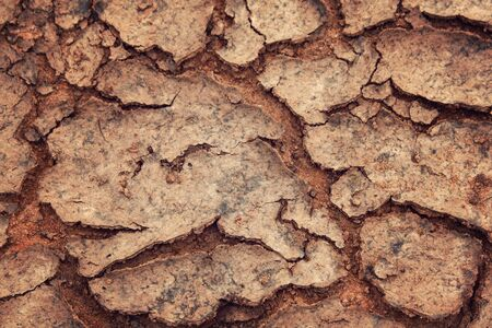 Cracks in the dried soil. Erosion. Global warming. Soil texture. Aged photo. Dry ground as a texture. Close Up of dry soil.