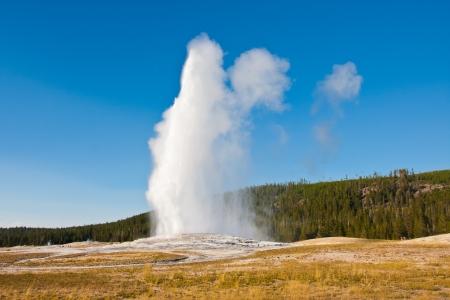 Erupción del géiser Old Faithful en el Parque Nacional de Yellowstone Foto de archivo
