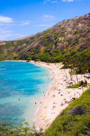 Snorkeling Bay in Oahu,Hawaii 版權商用圖片