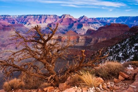 The World Famous Grand Canyon National Park,Arizona,USA photo