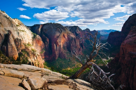 zion: Zion National Park,Utah Stock Photo