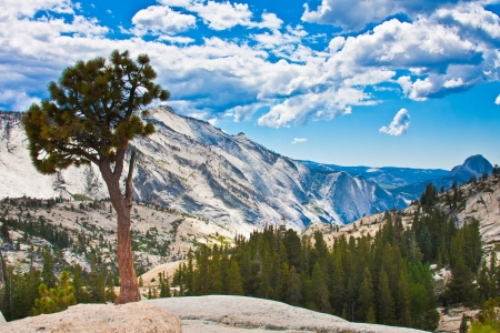 Landscape in Yosemite National Park, California, USA photo