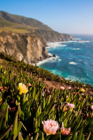 Beautiful Coastline in Big Sur,California  photo