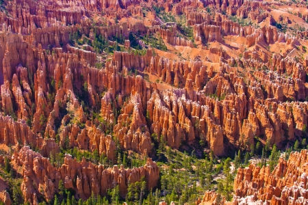 Amphitheater of Hoodoos from Inspiration Point , Bryce Canyon National Park, Utah, USA photo