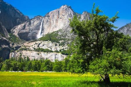 bridalveil fall: Yosemite Falls in Yosemite National Park,California