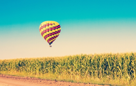 air plant: Hot air balloon flying over corn fields against blue sky in old style