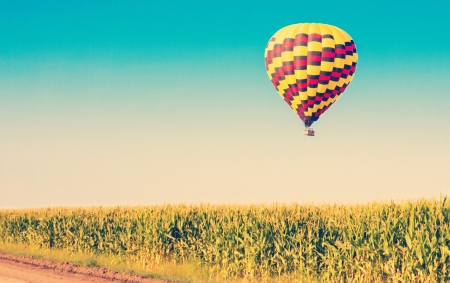 corn flower: Hot air balloon flying over corn fields against blue sky in old style