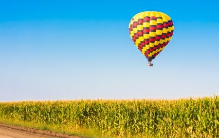 Heißluftballon fliegen über Maisfelder gegen den blauen Himmel Standard-Bild - 21167033