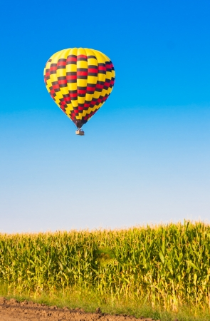 Hot air balloon flying over corn fields against blue sky photo