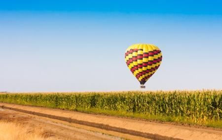 Heißluftballon fliegen über Maisfelder gegen den blauen Himmel Standard-Bild - 21167038