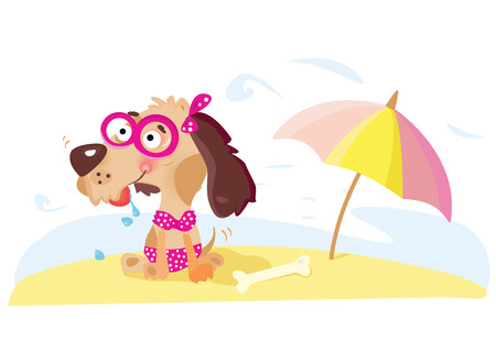 Lady dog on the beach. Vector illustration. For more illustrations visit my portfolio! Vector