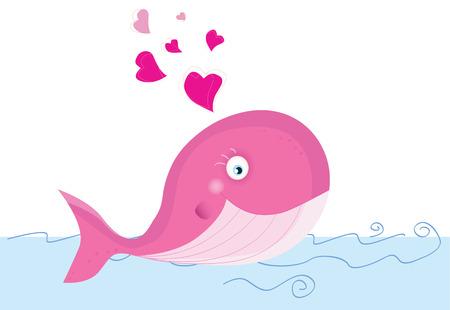 ballena azul: Ballenas en el amor. Ilustraciones Vectoriales de animales de mar.