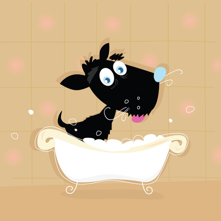Black dog bath. Bathing black small doggie. VECTOR ILLUSTRATION. Illustration
