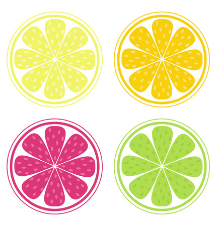 Citrus fruit slices isolated on white background (lemon, lime, orange, grapefruit). Lemon, lime, orange and red grapefruit isolated on white background. Stylized Vector Illustration of fresh fruit. Vector