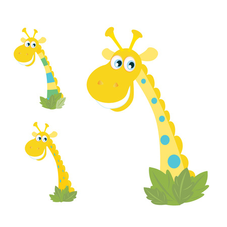 Three yellow giraffe heads isolated on white. Cartoon cutte giraffes on white background.  Vector