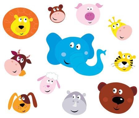 Abbildung eingestellt cute Tiere Gesichter. Tierk�pfe auf wei�em Hintergrund. Lion, Monkey, Pig, Giraffe, Kuh, Elefanten, Tiger, Sheep, Dog, Hippo und Bear.  Illustration