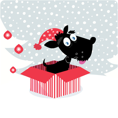 cute christmas: Cute christmas black doggie in red box. Vector Illustration.