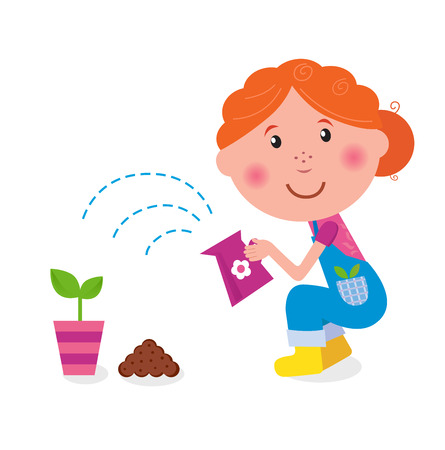 watering pot: Small girl is watering plant in the garden  Illustration