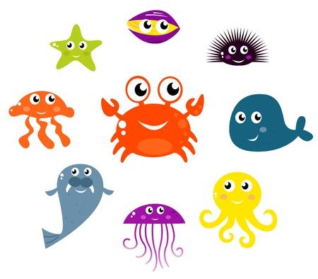 pilluelo: Conjunto de criaturas y animales bajo el agua. Vector de cartoon ilustraci�n.