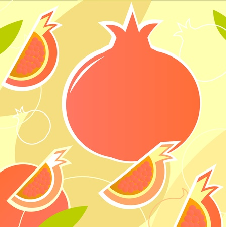 Retro Pomegranate texture or background. Vector