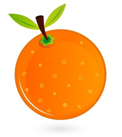 fruited: Orange for your design. Vector Illustration