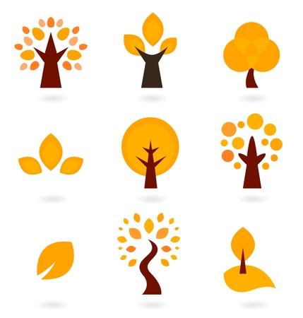 arboles de caricatura: �rboles de oto�o colecci�n. ilustraci�n