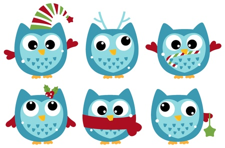 Various owl set. Vector cartoon illustration Illustration