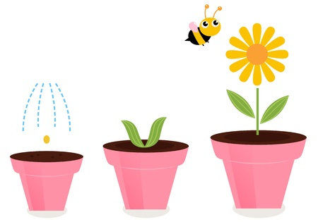 Cute spring flower growth cartoon Illustration Vector