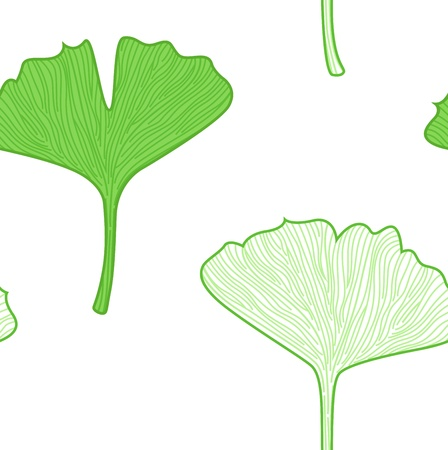 Seamless Gingko biloba leaves. Vector background Vector