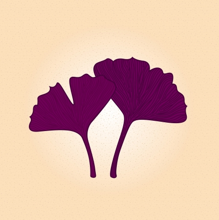 Hand drawn retro Gingko leaf. Vector Illustration Vector