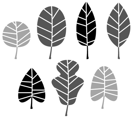 oak leaf: Collection of black Leaves silhouette.