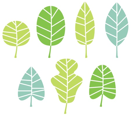 fresh herbs: Abstract patterned leaves set  Illustration