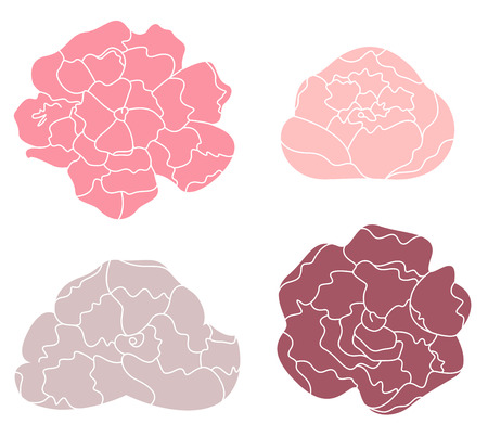 Sweet Peony flowers collection  Vector Illustration Vector