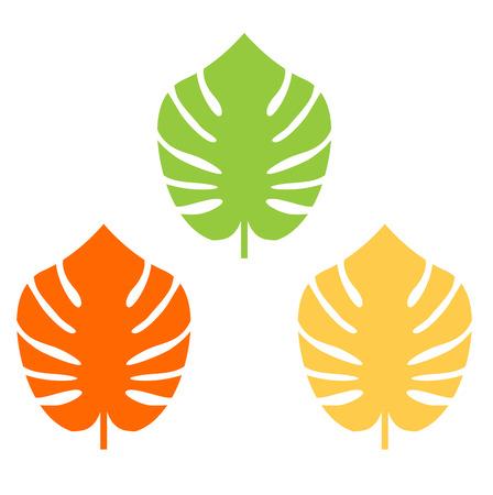 Exotic leaves set. Vector cartoon Illustration Banco de Imagens