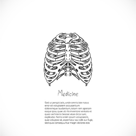 thoracic: Medical doodle background with thoracic skeleton for banner or flyer