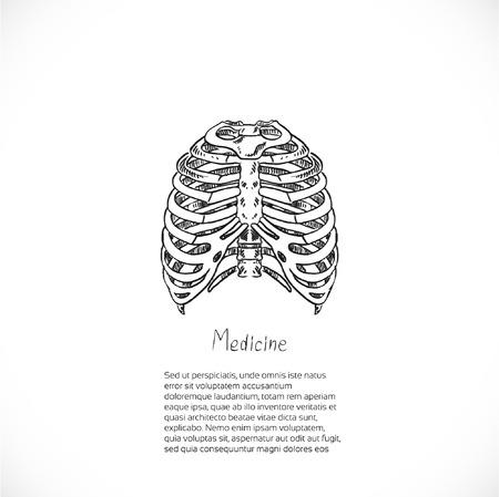klatki piersiowej: Medycyna doodle tło z klatki piersiowej szkielet na banner lub ulotki Ilustracja