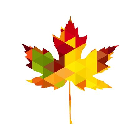 Autumnal Maple Leaf triangle Reklamní fotografie - 129443223