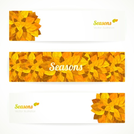 poster concepts: Three autumn banners with colorful leaves. Vector