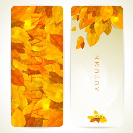 Set of vector banners with autumn leaves.