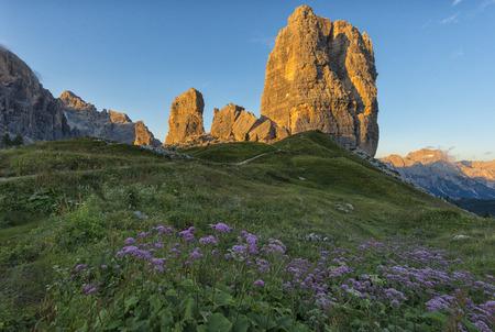 torri: Pink flowers in the meadows and Cinque Torri mountain range, Dolomites, Veneto, Italy