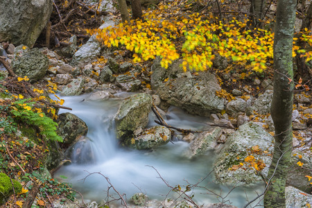 np: Waterfall in the woods in Autumn with foliage colors, Monte Cucco NP, Appennines, Umbria, Italy Stock Photo